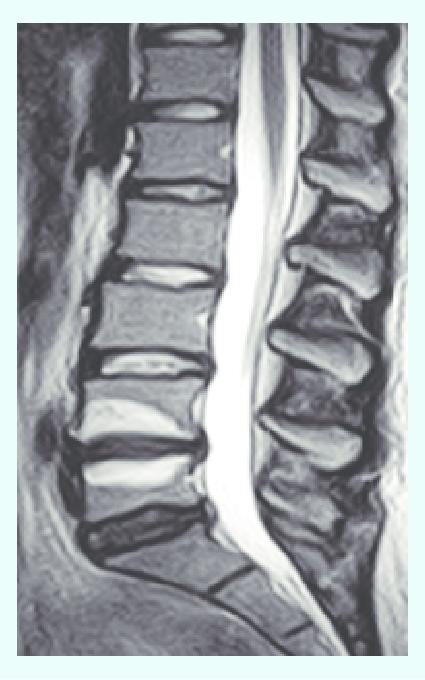 Learn osteopathy uk
