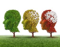 An Understand of Dementia and New Research Initiatives