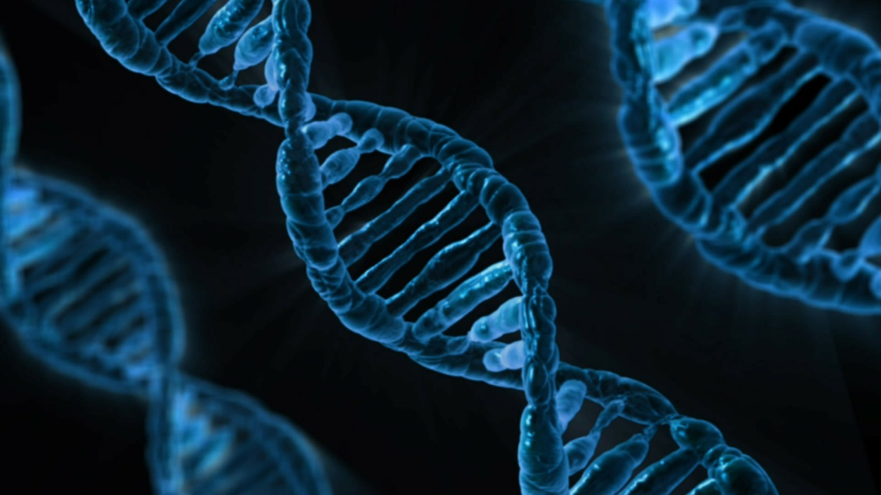 DNA; April 25th is the anniversary of its discovery. Gene Silencing is a new technique that could turn off harmful gene mutations such as Huntington's Disease